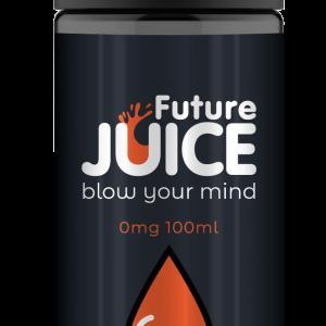 Future Juice Mango 100ml